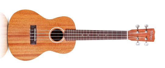 Cordoba Protégé U100CM Concert Ukulele - Best Ukuleles For Beginners Under $100