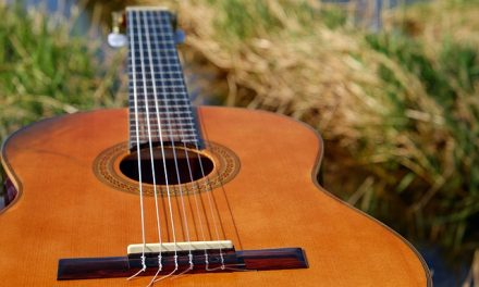 Ultimate Acoustic Guitar Buyers Guide