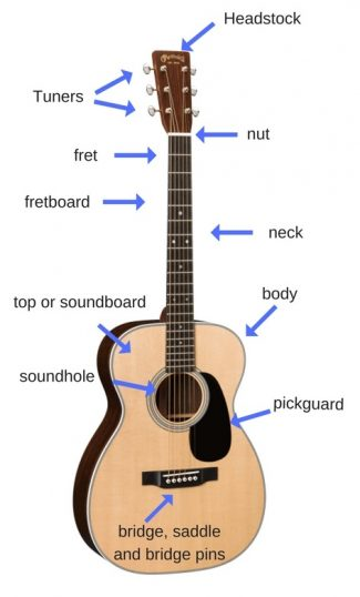 Acoustic Guitar Anatomy Diagram